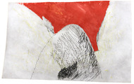 <p><span>Red Hill, 2014 / Ink and oil on tyvek / 5 x 15 inches</span></p>