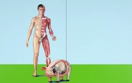 <p><em>DH-6 Man with Pig</em><span>, 2009, 36 x 60 inches, colored pencil and acrylic on panel</span></p>
