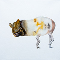 <p>Tapir Liplesslegs, 2011.  Watercolor, gouache, and ink on stretched paper, 10 x 10 inches</p>