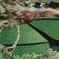 """<p><em><strong>Grizzly Green,</strong></em><strong></strong>2007. Oil and acrylic on canvas, 45 x 60""""</p>"""