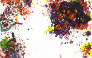 <p><strong>Sam Francis</strong></p>