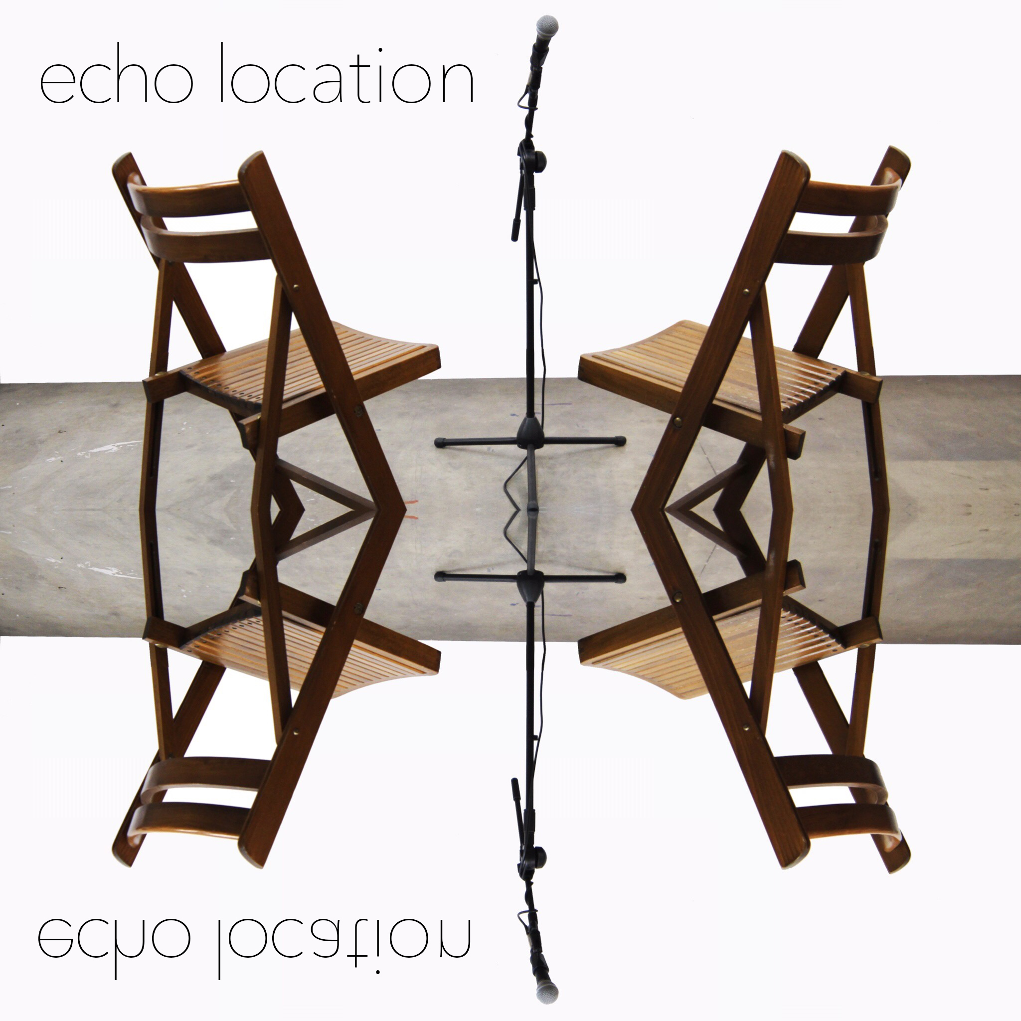 Echo_location_ig