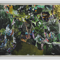 """<p><strong><em>Seed Library,</em>2016. </strong><span>Paper collage on panel, 14 x 11""""</span></p>"""
