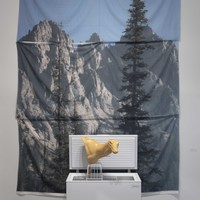 <p><em>I Love the View from the places I Don&rsquo;t. </em></p> <p>Taxidermy deer form, chest freezer, fabric photo, plaster, salt. 13&rsquo; x 10&rsquo; x 3&rsquo;</p>